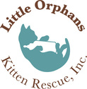 Little Orphans Kitten Rescue Inc.